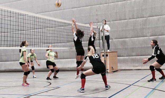 volleyball ergebnisse bayern